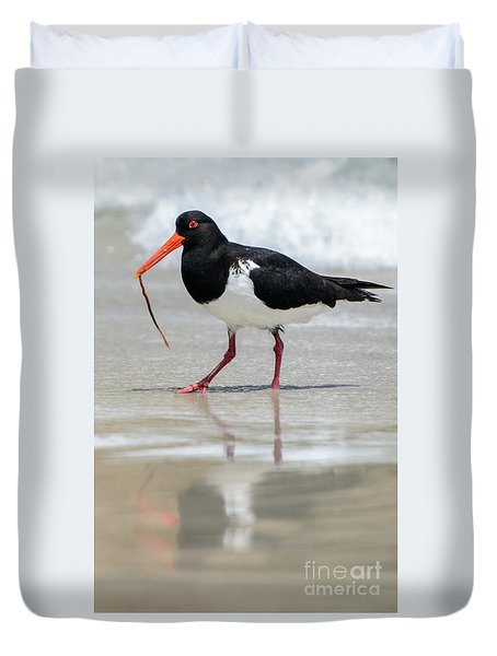 Oystercatcher 03 Duvet Cover