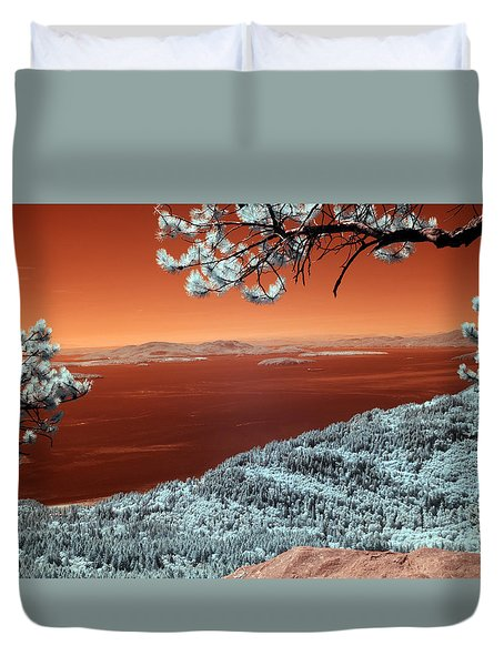 Oysterdome  Duvet Cover by Rebecca Parker