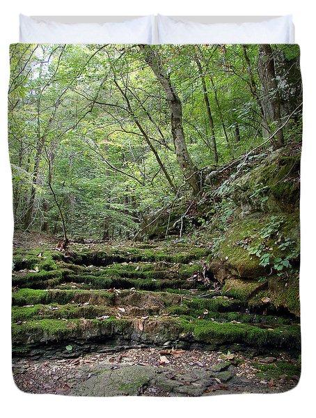 Ozark Creek Duvet Cover