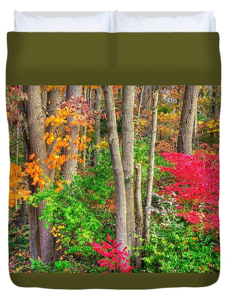 Pa Country Roads - Autumn Flourish - Harmony Hill Nature Area - Chester County Pa Duvet Cover by Michael Mazaika