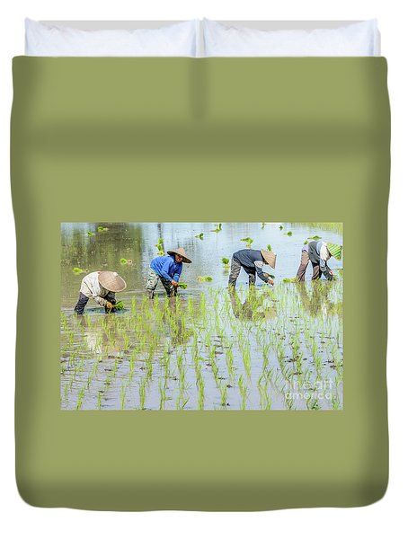Paddy Field 1 Duvet Cover by Werner Padarin