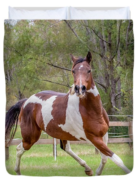 Paint Mare In Field Duvet Cover by Gwen Vann-Horn