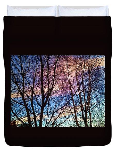 Paintbrush IIi Duvet Cover