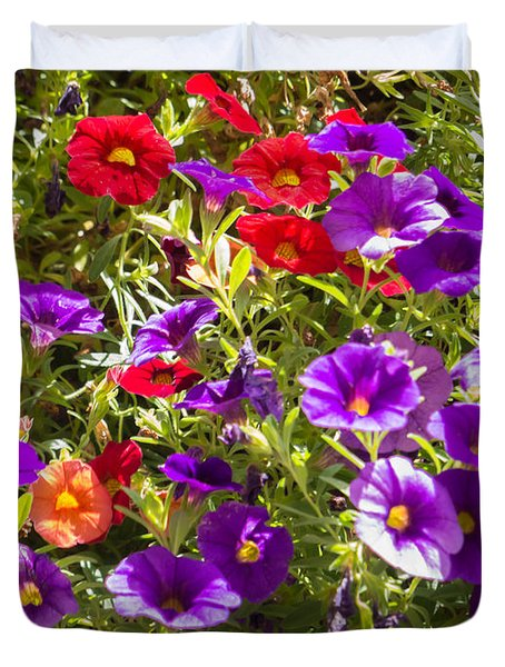 Painted Pansies Duvet Cover by Bob and Nancy Kendrick