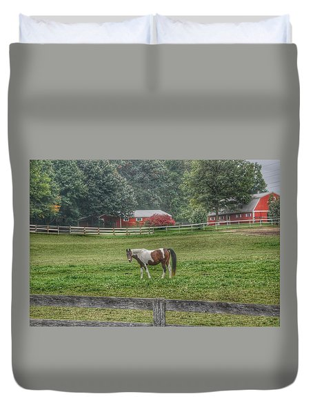 1005 - Painted Pony In Pasture Duvet Cover