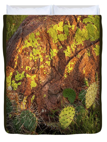 Painted Rock Duvet Cover by Iris Greenwell