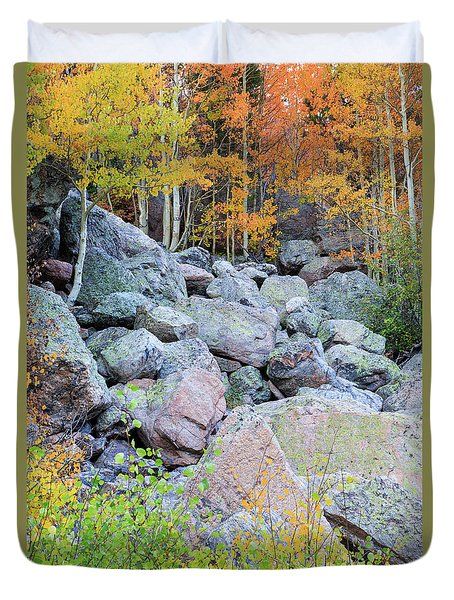Duvet Cover featuring the photograph Painted Rocks by David Chandler