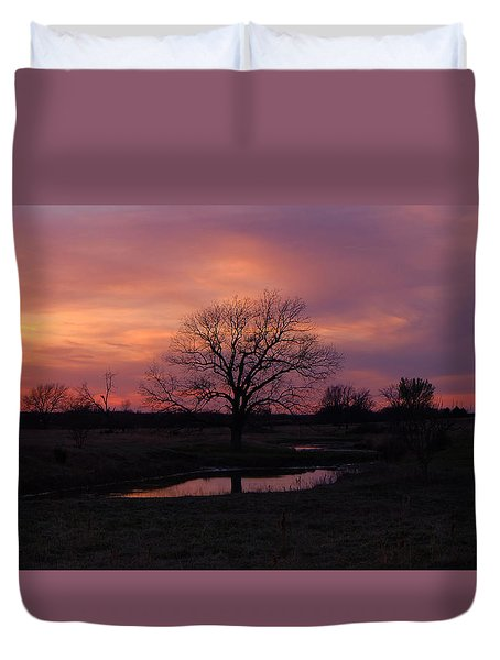 Painted Sky Duvet Cover by Ricardo J Ruiz de Porras
