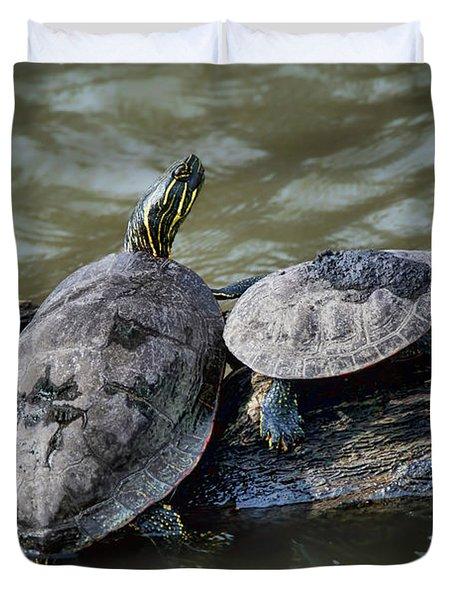 Painted Turtle Pair Duvet Cover