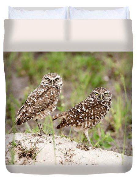 Pair Of Burrowing Owls Duvet Cover