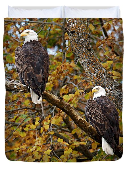 Pair Of Eagles In Autumn Duvet Cover