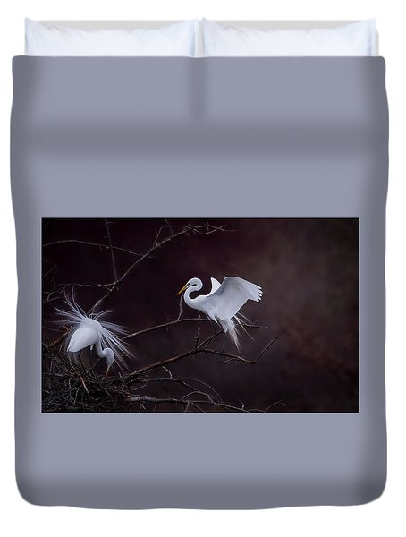 Pair Of Egrets Duvet Cover by Kelly Marquardt