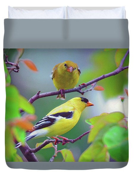 Pair Of Goldfinches Duvet Cover