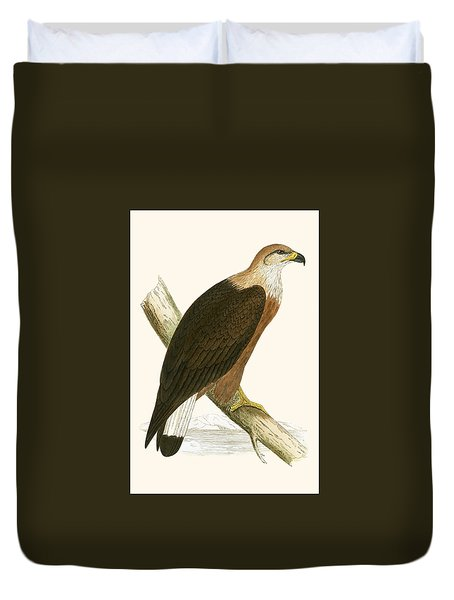 Pallas's Sea Eagle Duvet Cover by English School