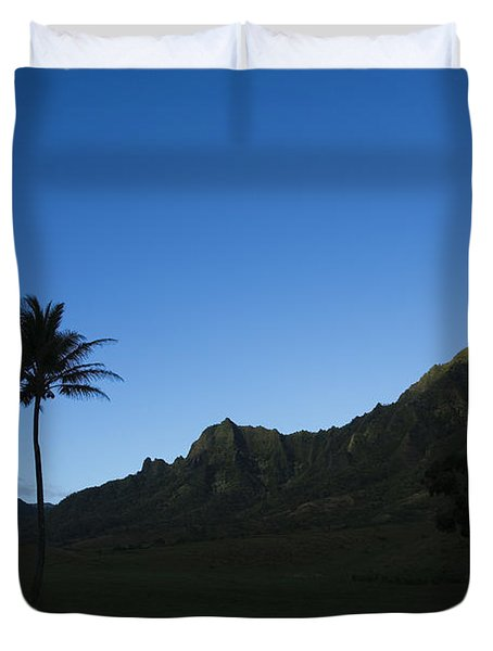 Palm And Blue Sky Duvet Cover by Dana Edmunds - Printscapes