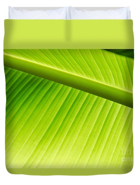 Palm Leaf Background Duvet Cover