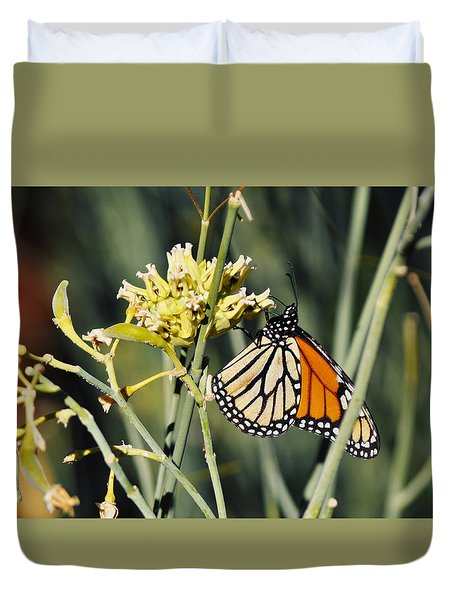 Duvet Cover featuring the photograph Palm Springs Monarch by Kyle Hanson