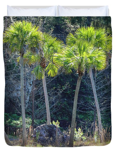 Duvet Cover featuring the photograph Palm Tree Island by Raphael Lopez