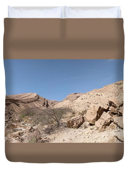 Panorama On Genesis Land 03 Duvet Cover