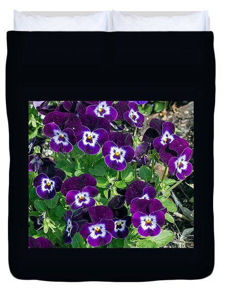 Pansies 1 Duvet Cover by Kenneth Albin