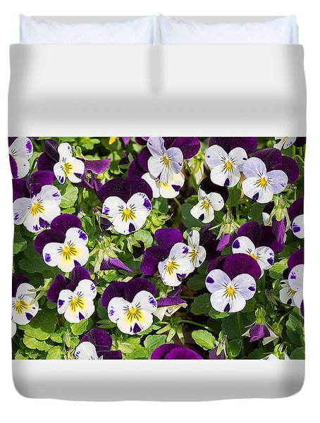 Pansies 2 Duvet Cover by Kenneth Albin