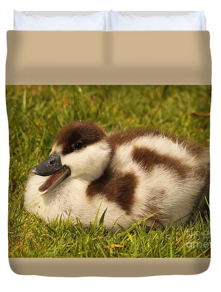 Duvet Cover featuring the photograph Paradise Shelduckling Calling by Max Allen