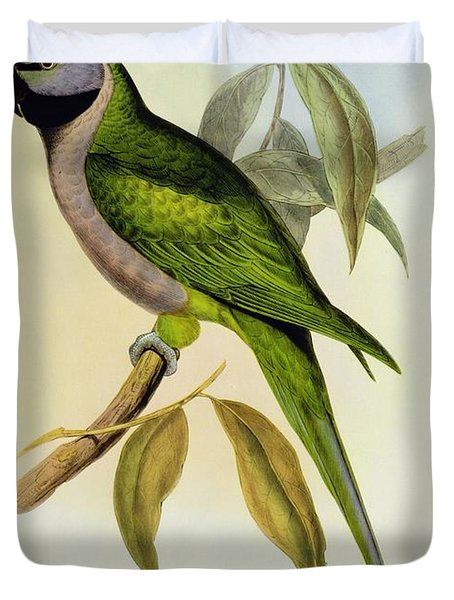 Parakeet Duvet Cover by John Gould