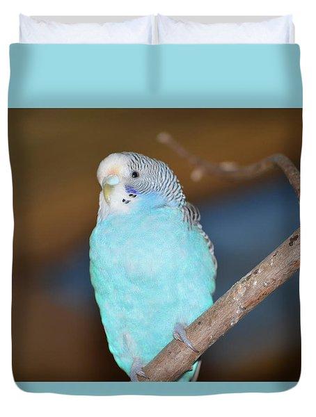 Parakeet Duvet Cover by Linda Geiger