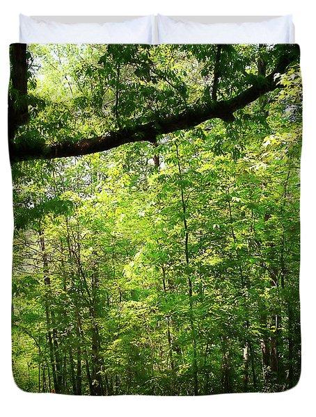 Paris Mountain State Park South Carolina Duvet Cover by Bellesouth Studio