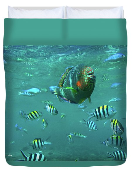 Parrot Fish Duvet Cover by Tim Fitzharris