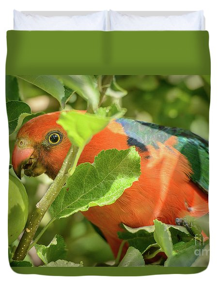 Duvet Cover featuring the photograph  Parrot In Apple Tree by Werner Padarin