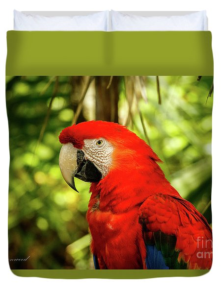 Parrot Duvet Cover