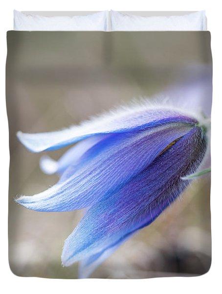 Pasque Flower's Silver Grey Hair Duvet Cover
