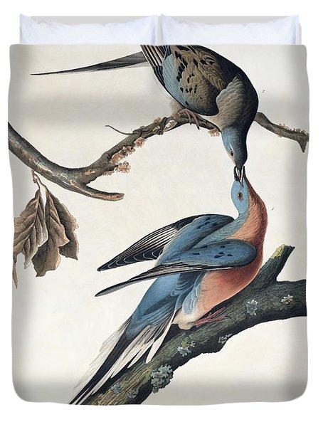 Passenger Pigeon Duvet Cover by John James Audubon