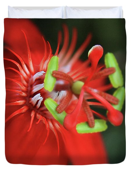 Passiflora Vitifolia Scarlet Red Passion Flower Duvet Cover by Sharon Mau