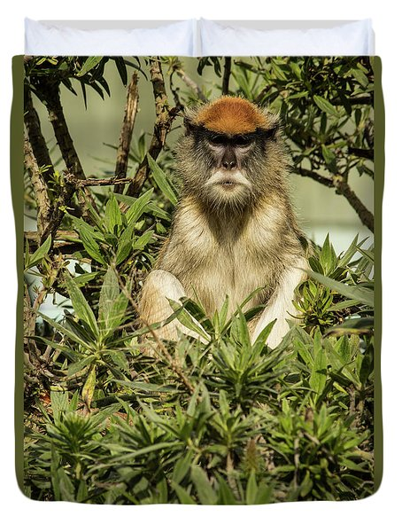 Patas Monkey Duvet Cover