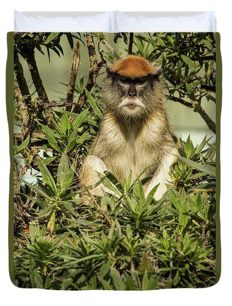 Patas Monkey Duvet Cover