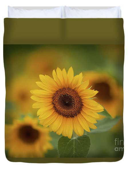 Patch Of Sunflowers Duvet Cover