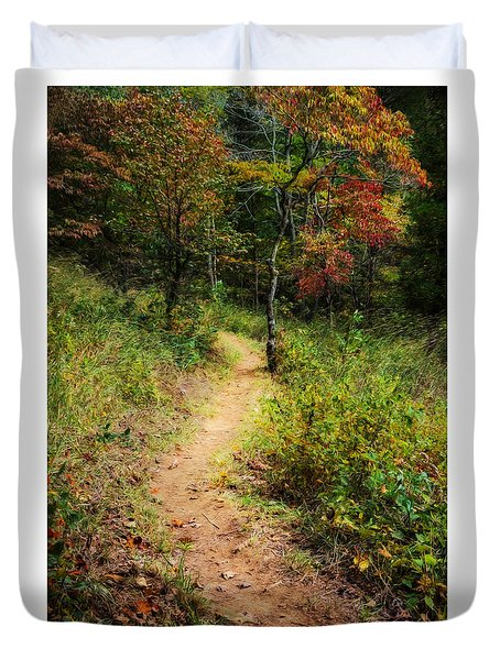 Path In The Prairie Duvet Cover by Diana Boyd