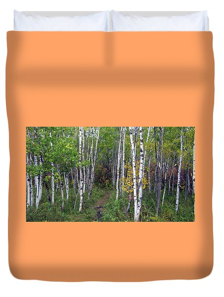 Path In The Woods 5 Duvet Cover