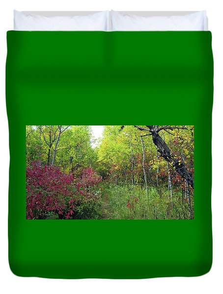 Path In The Woods 8 Duvet Cover