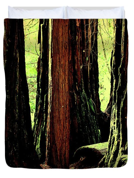 Path Through The Forest Edge . 7d5432 Duvet Cover