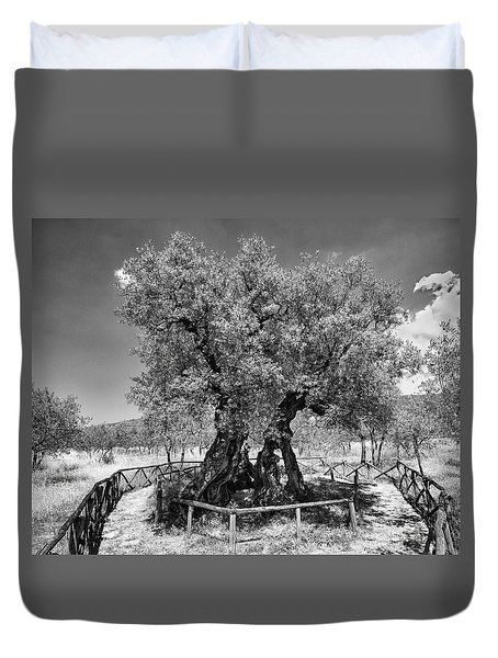 Patriarch Olive Tree Duvet Cover