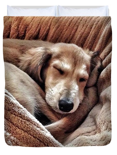 Peace At Last #saluki Duvet Cover by John Edwards