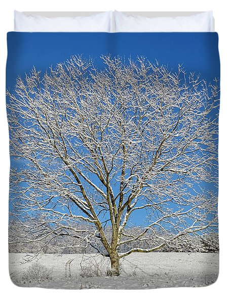 Peaceful Winter Duvet Cover