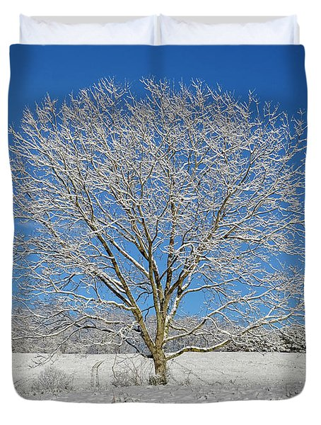 Peaceful Winter Duvet Cover