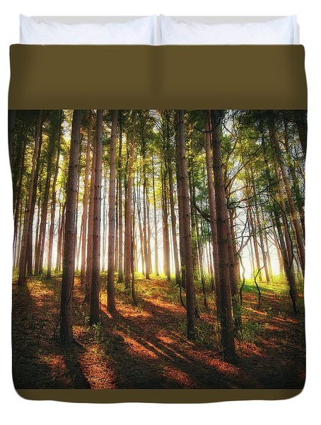 Peaceful Wisconsin Forest 2 - Spring At Retzer Nature Center Duvet Cover by Jennifer Rondinelli Reilly - Fine Art Photography