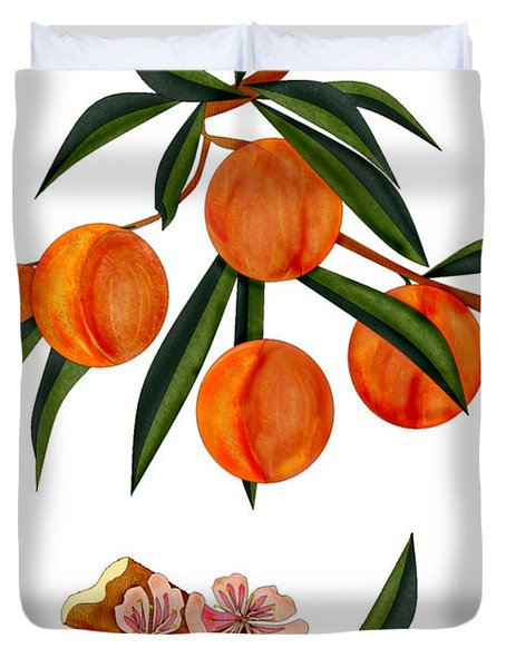 Peach And Peach Blossoms Duvet Cover by Anne Norskog