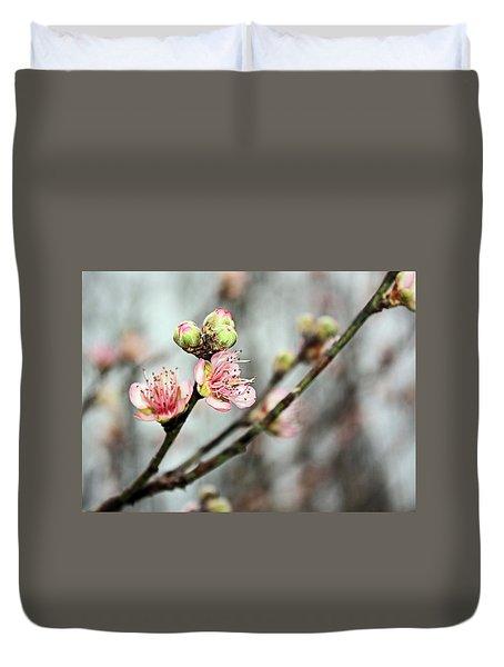 Peach Blossom Duvet Cover by Kristin Elmquist