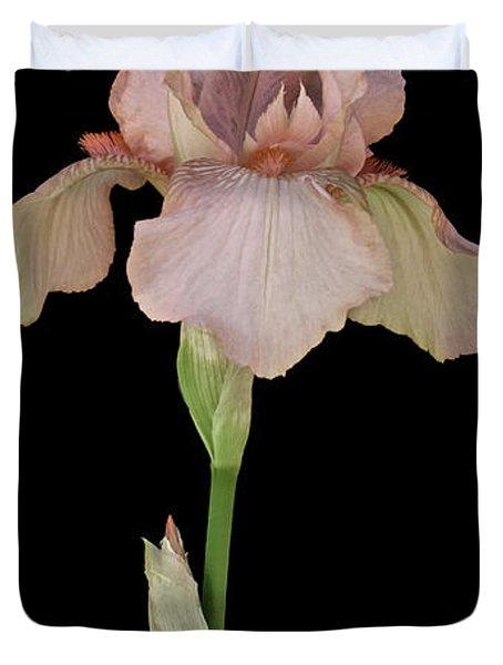 Peach Iris Duvet Cover by Michael Peychich